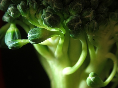 Broccoli-Super Food and Natural Smile Inducer.
